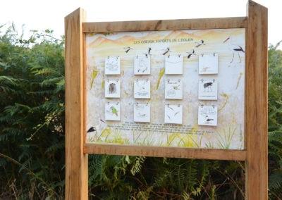 Les oiseaux experts de l'éolien