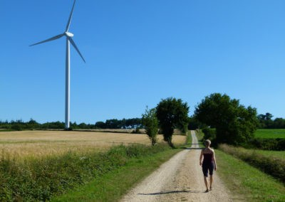 En chemin vers une des quatre éoliennes